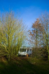 A view of our caravan through the trees